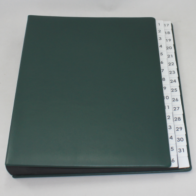 Daily Desk File Sorter with Green Smooth Full Cowhide Cover